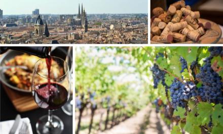 Vin de Bordeaux : Les informations principales