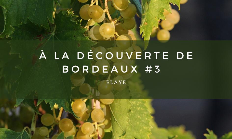 A la découverte de Bordeaux #3 – Blaye